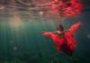 Lexi Laine. La innovación en el arte fotográfico submarino